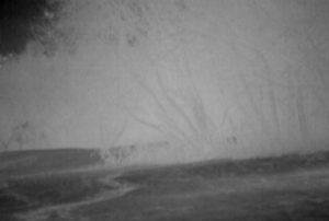 Ландшафт, снятый с помощью Pulsar Quantum XD50S