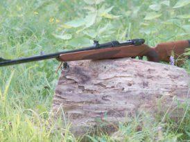 Ижевский Mauser TK 598